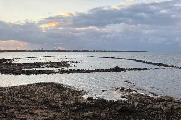 Bribie Island Fish Trap