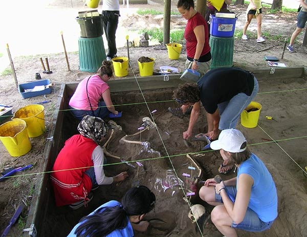 Students participating in a dig